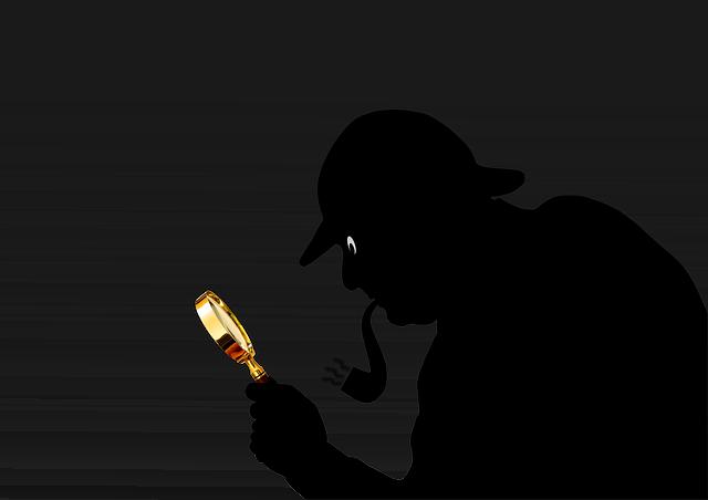 detektiv na stopě